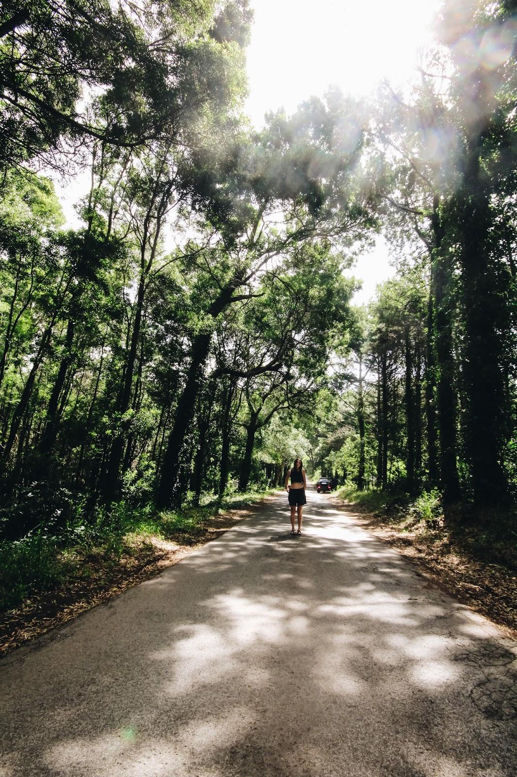 Roadtrip von Lissabon zum Sintra National Park